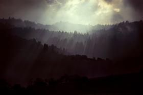 Palo Alto Storm by Peter Adams.