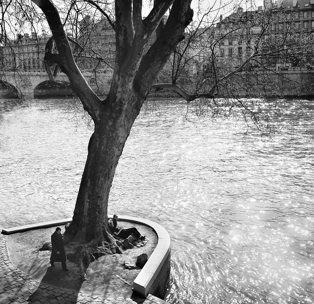 Banks of the Seine by Copyright Peter Adams. All Rights reserved..