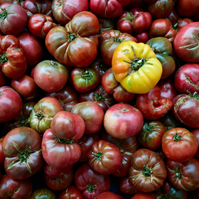 Heirloom Tomatos by Peter Adams.