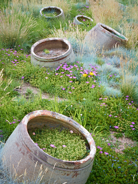 Scattered Planters by Peter Adams.