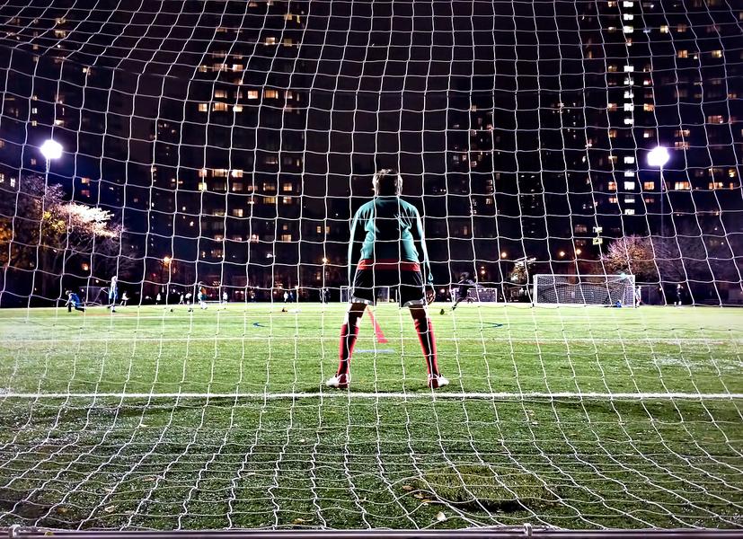 Goalie by Peter Adams.