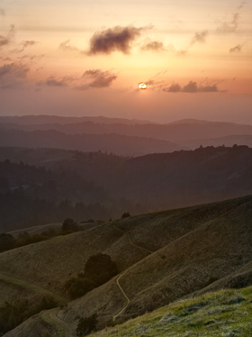 Russian Ridge Open Space Preserve by Peter Adams.