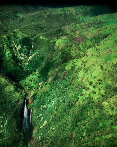 Manawaiopuna Falls (Jurassic Falls) by Peter Adams.