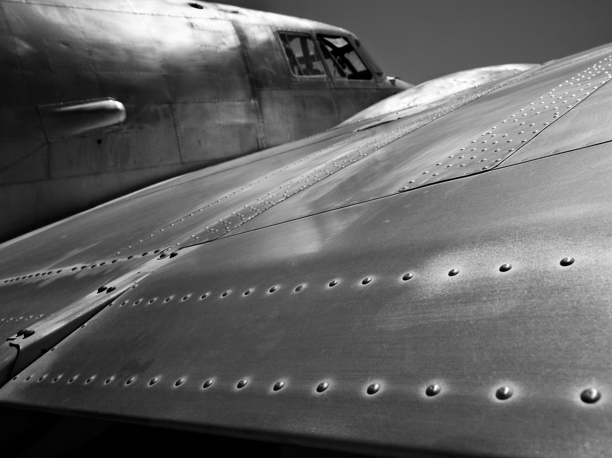 Aircraft Rivet Types : Metal wing peter adams photography