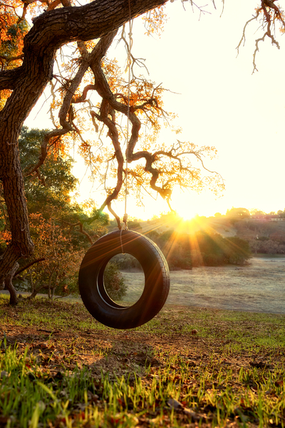 Tire Swing by Peter Adams.