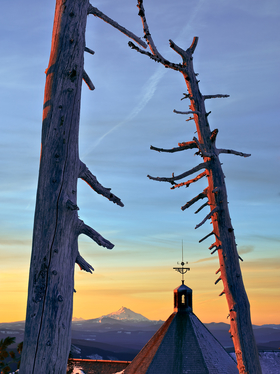 Timberline by Peter Adams.