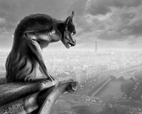 Gargoyle of Notre Dame by Peter Adams.