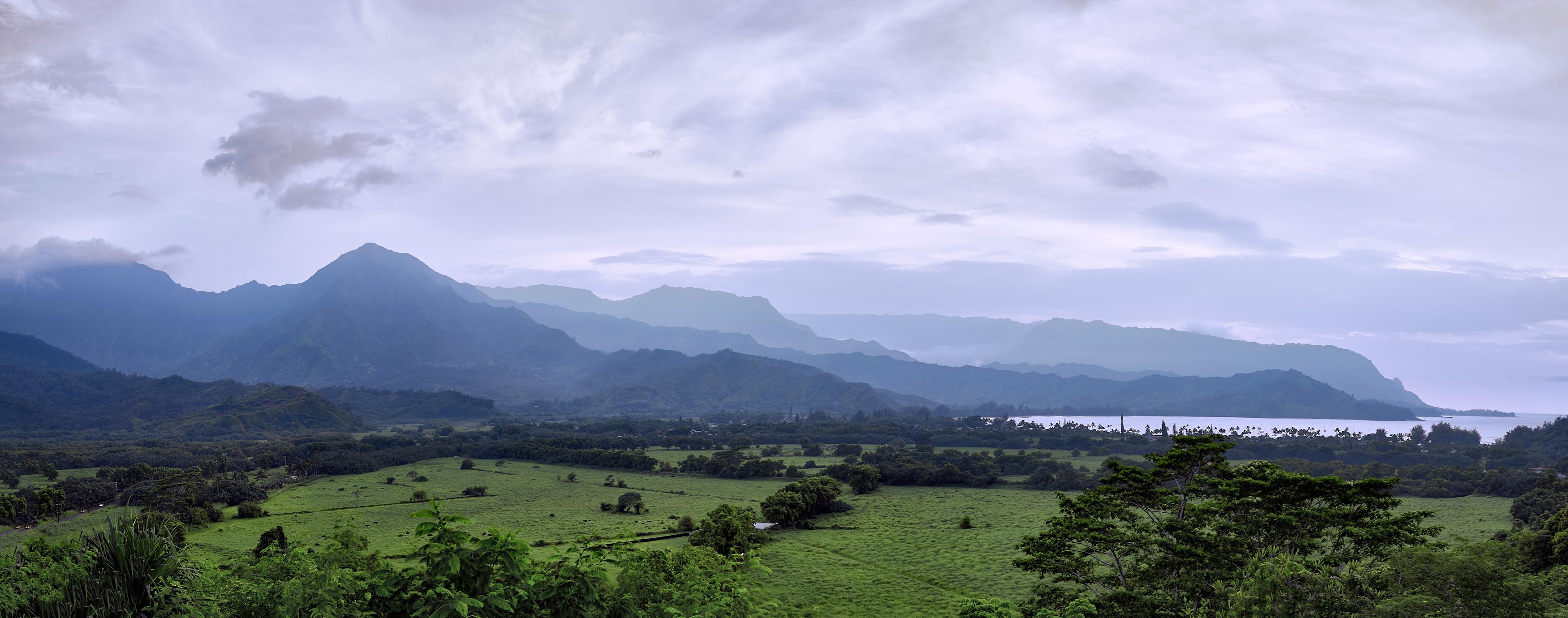Hanalei Panorama by Peter Adams.