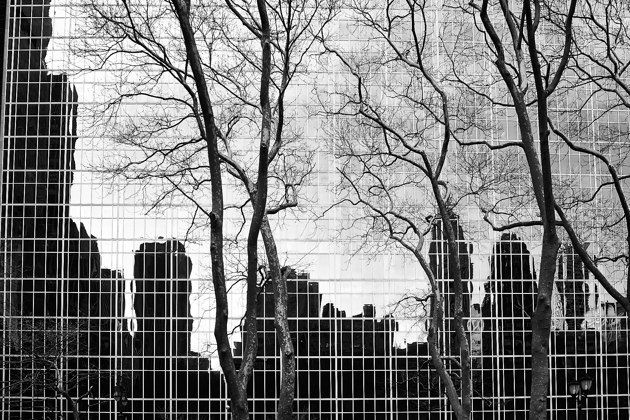 Bryant Park Reflections by Peter Adams.