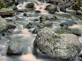Rocks In Stream by Peter Adams.