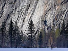 Granite, Yosemite National Park, California.