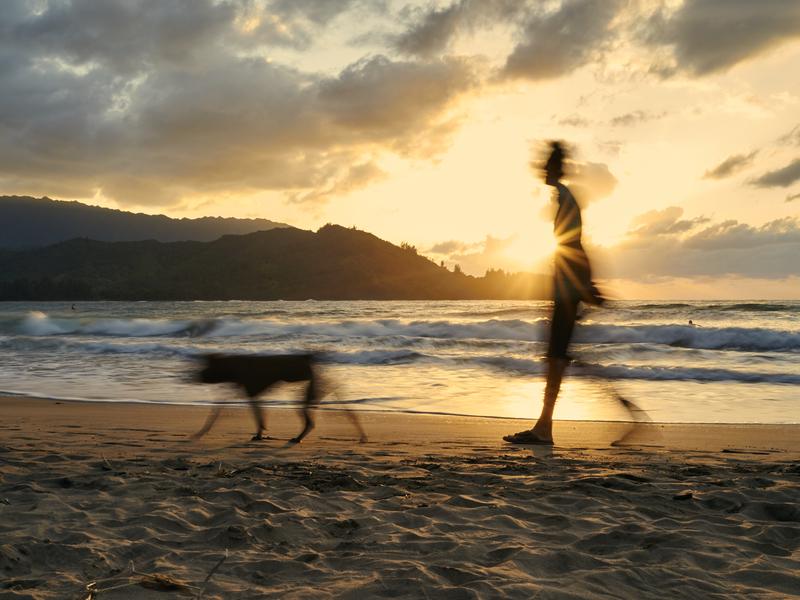 Hanalei Bay Walk by Peter Adams.