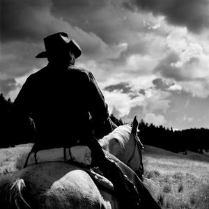 Cowboy by Peter Adams