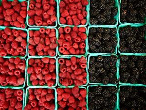 Berries by Peter Adams.