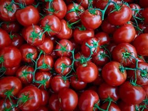 Roma Tomatos by Peter Adams.