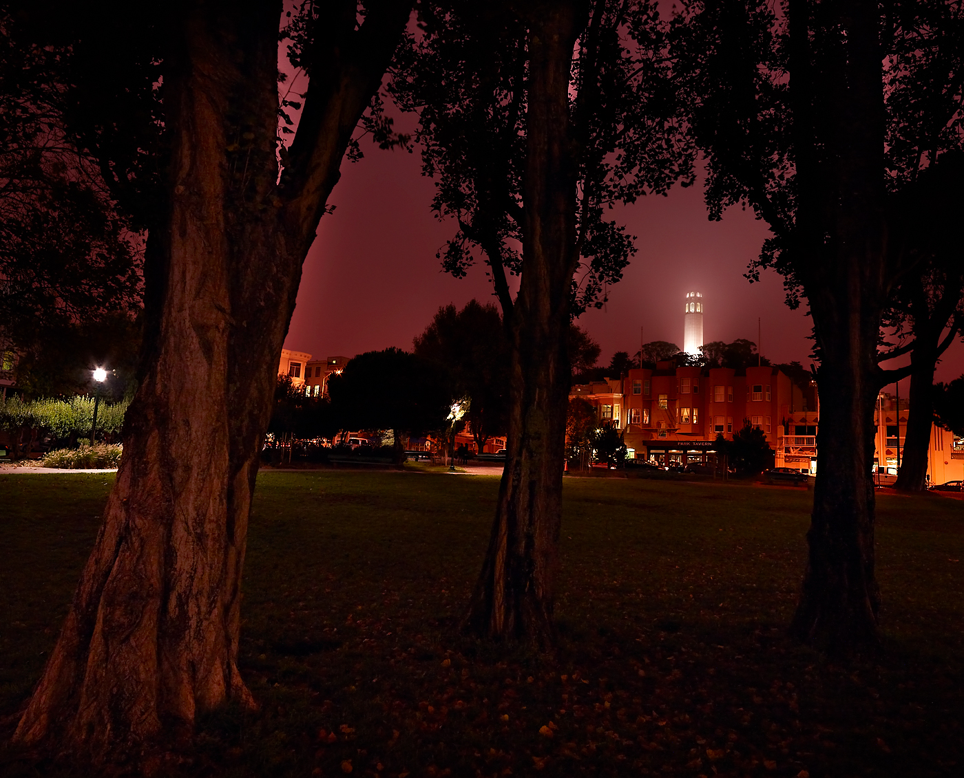 Coit Tower by Peter Adams