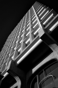 525 University Avenue by Peter Adams.