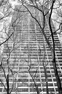 Grace Building by Peter Adams.