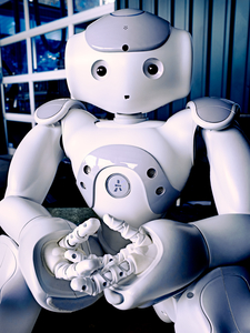 Nao Robot by Peter Adams.