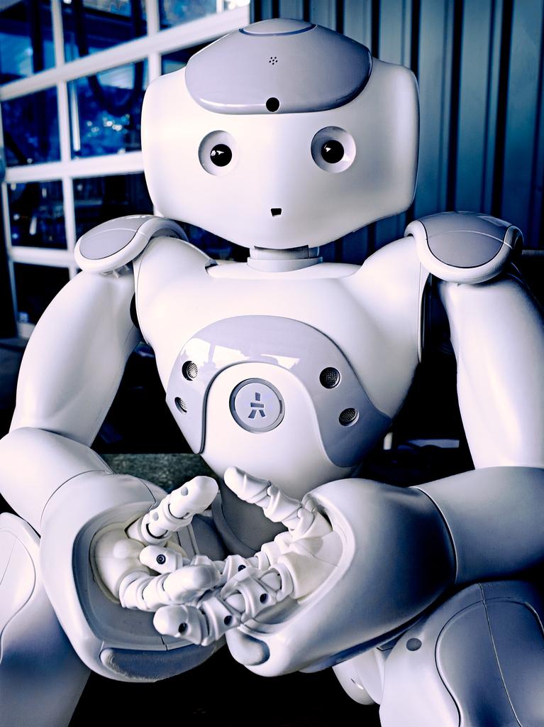 Nao Robot by Peter Adams.