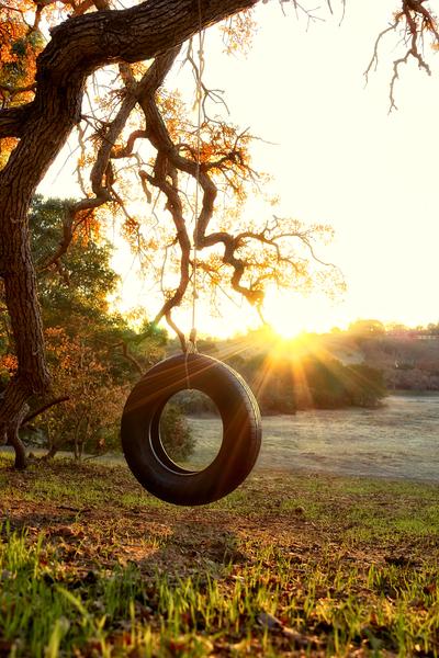 Tire Swing by Peter Adams.