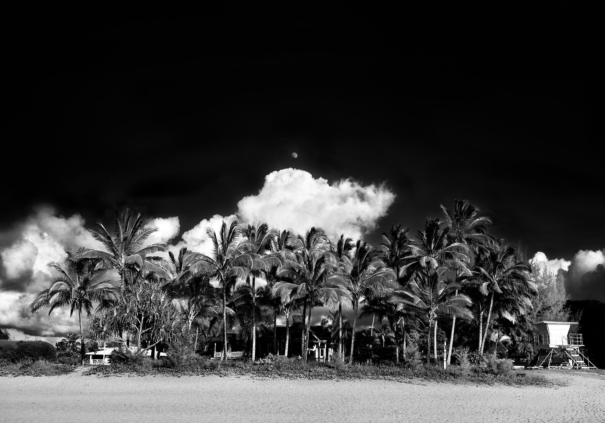 Hanalei, Hawaii Moonrise by Peter Adams.