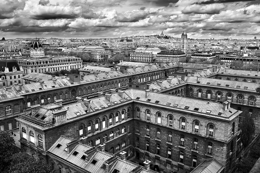 Paris Rooftops by Peter Adams.