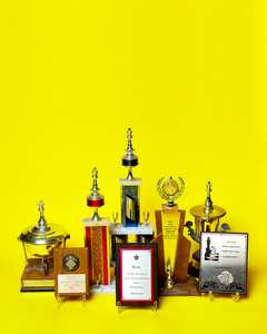 Chess Competition Awards by Peter Adams.